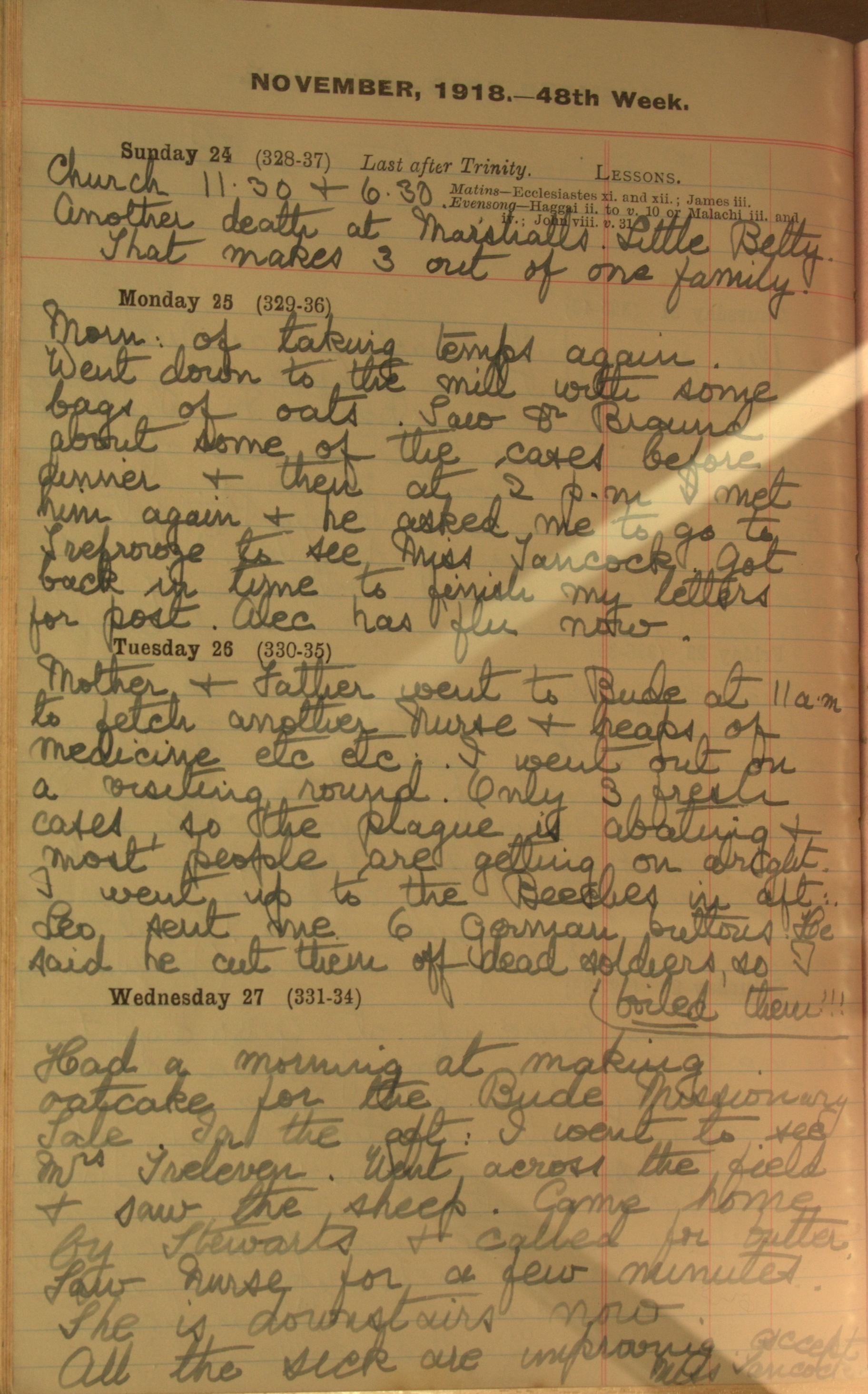 Entry 27th November 1918 Translation: '… Leo sent me 6 German buttons. He said he cut them off dead soldiers, so I boiled them!!!'